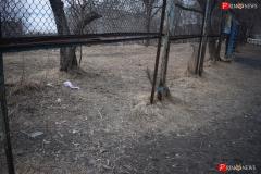 <strong>Металлический забор по периметру стадиона давно в аварийном состоянии</strong>