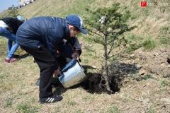 <strong>Самой важной частью субботника стала посадка аллеи хвойных деревьев, в которой участвовали и взрослые, и дети. Руководили процессом опытные специалисты. В итоге за пару часов аллею полностью высадили.</strong>