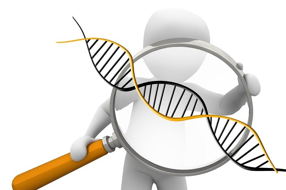 В Приморье будут выполнять судебно-геномную экспертизу