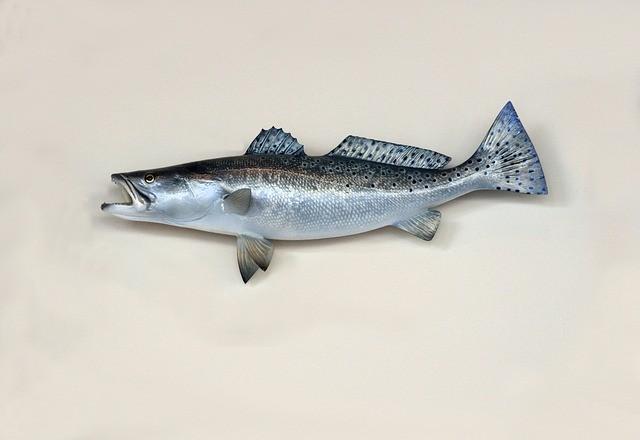 Более тонны опасной рыбы с признаками разложения изъяли полицейские в Артёме