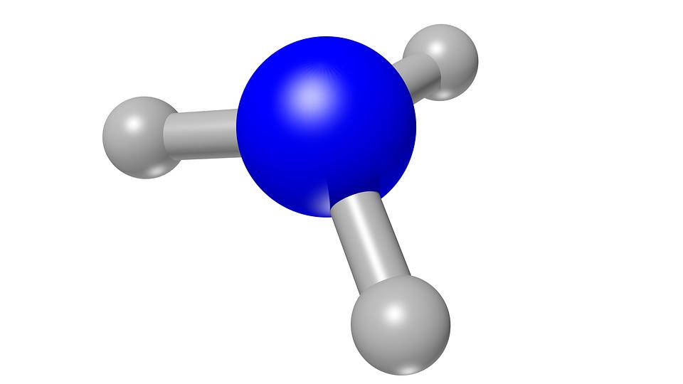 Ловушку для радиоактивных металлов разработали учёные из Приморья