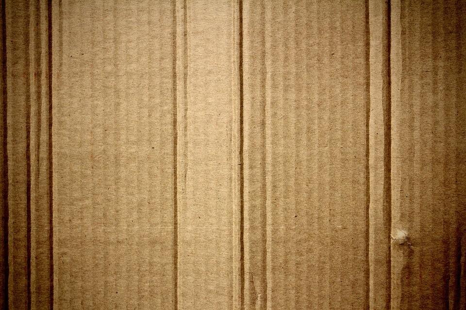 На ВЭФ-2016 не забыли и про Уссурийский картонный комбинат
