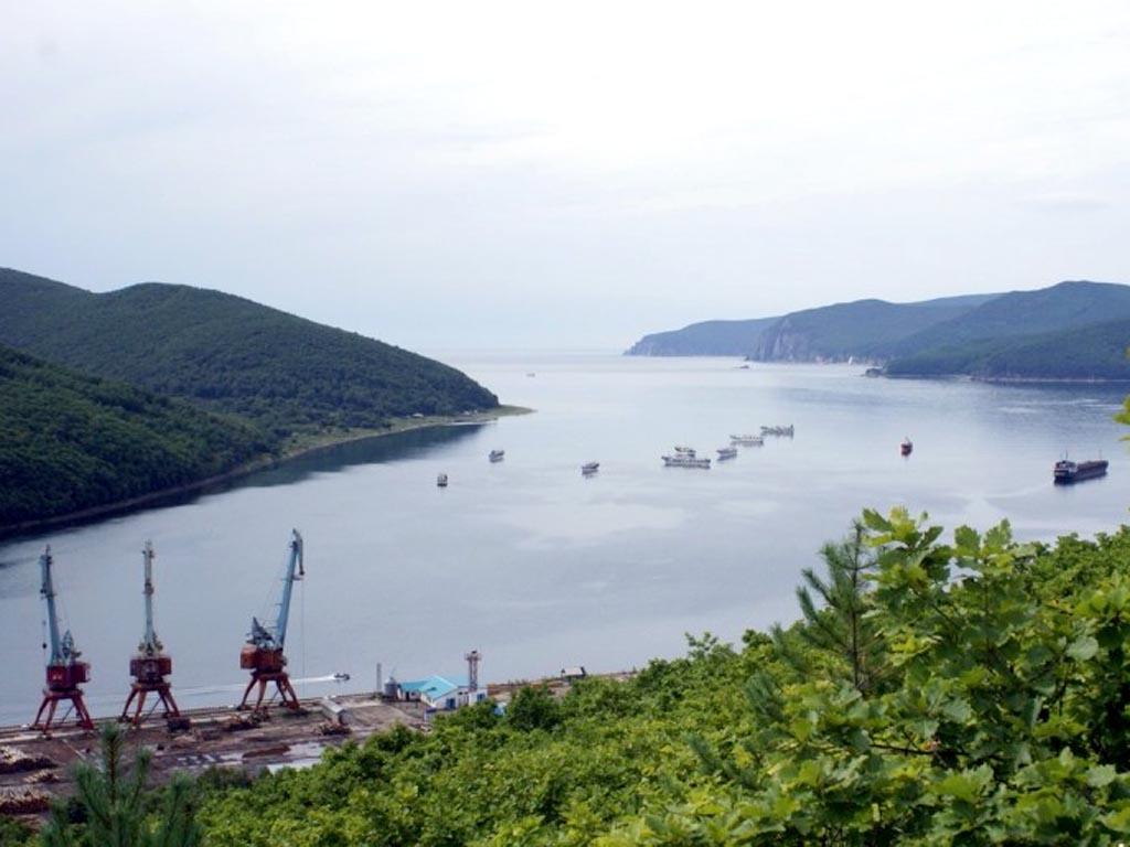 «Корпорация развития Дальнего Востока» поддержала проект в порту Ольга