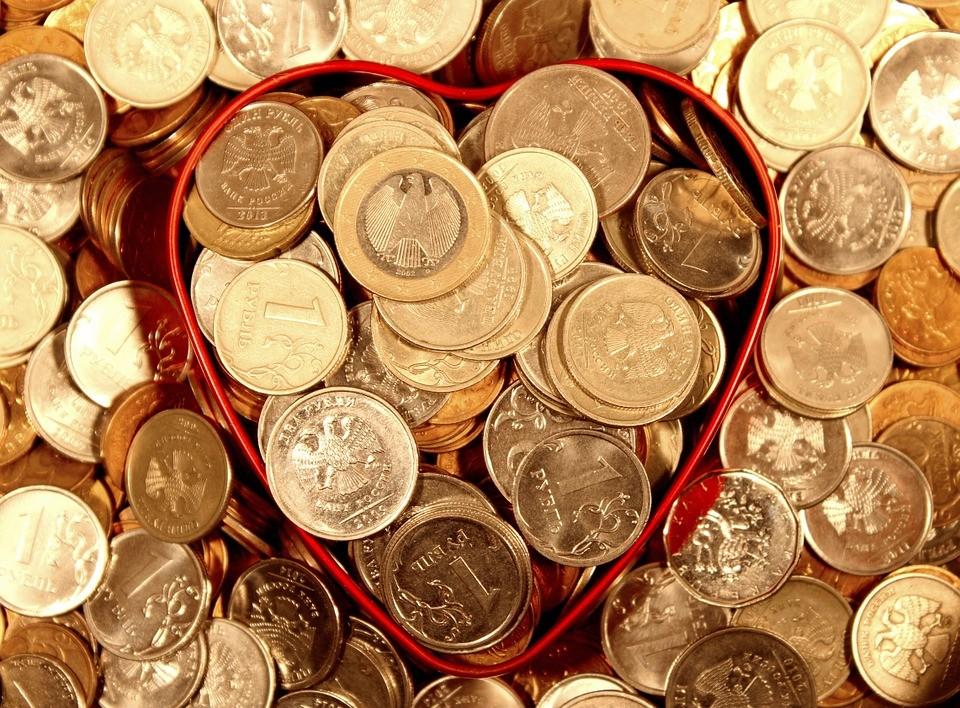 Некоммерческие организации Уссурийска получат поддержку из муниципального бюджета