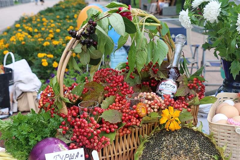 Лучших садоводов и огородников определили во Владивостоке