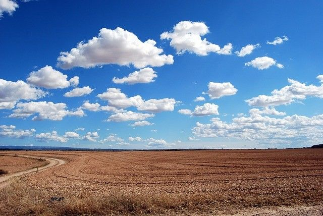 Что сегодня сделано для ТОР «Надеждинская» в Приморье?