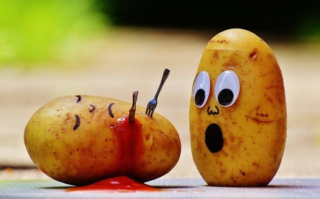В Приморье не позволили ввезти 27 тонн подозрительного китайского картофеля