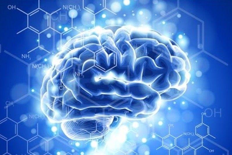 Во Владивостоке разработают новый способ лечения опухоли головного мозга