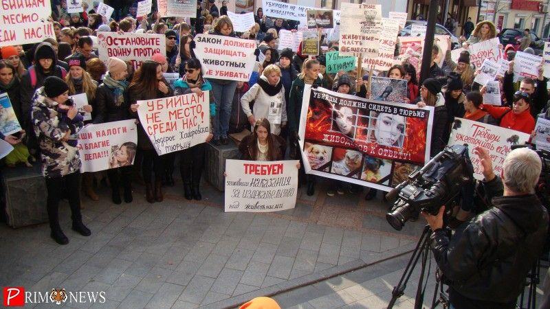 «Изверги должны понести наказание!»: во Владивостоке прошёл пикет против хабаровских живодёрок