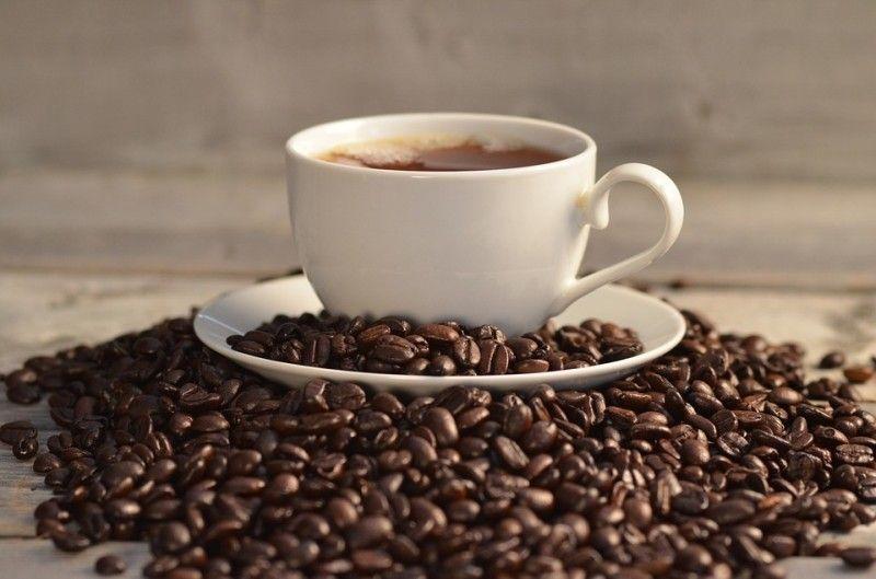 Во Владивостоке представят новые сорта кофе с медовой обработкой