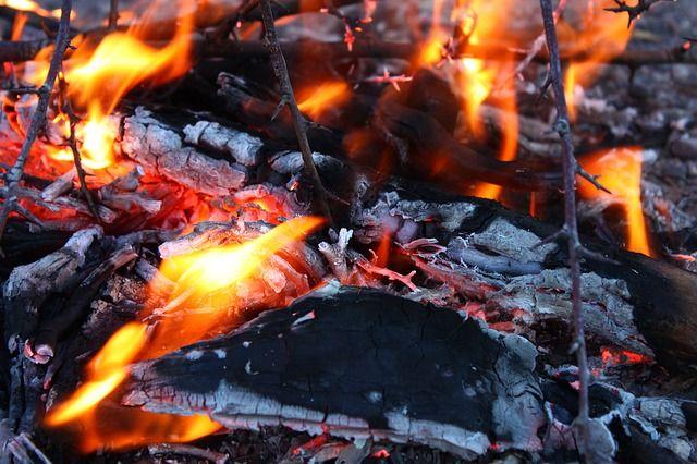 Во Владивостоке сгорел дом на базе отдыха на Русском