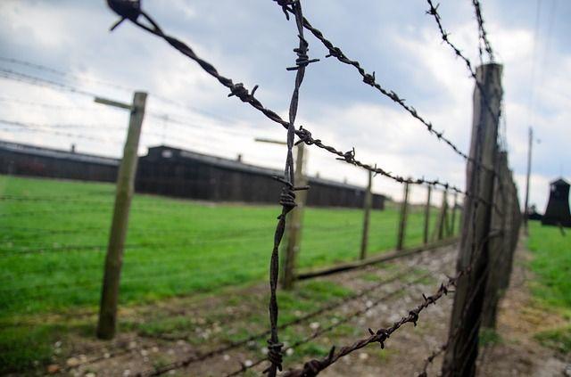 В Приморье осудили двух мужчин за нападение на пенсионерку