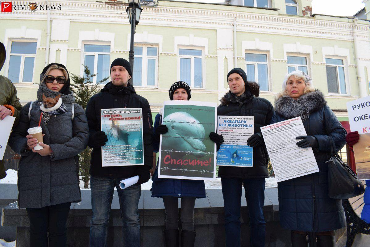 Зоозащитники на пикете во Владивостоке потребовали перепрофилировать Приморский океанариум