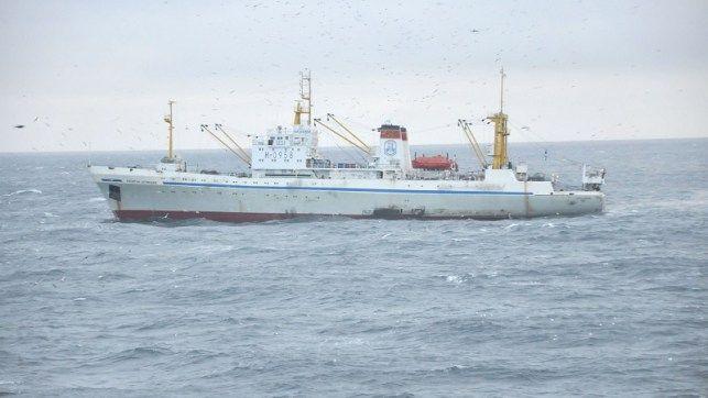 Приморские рыбаки будут выпускать печень минтая прямо на борту траулера «Капитан Демидюк»