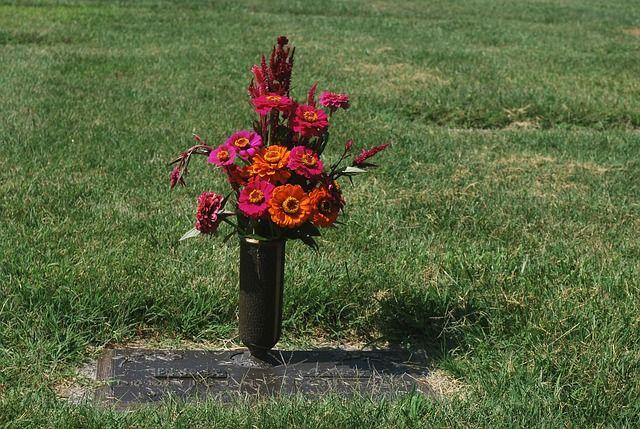 В тендере на оказание ритуальных услуг для приморского дома-интерната указали число гробов