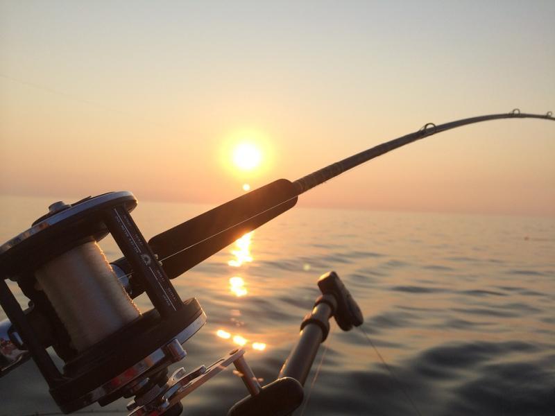 Более 8000 бобин рыболовных лесок арестовали владивостокские таможенники