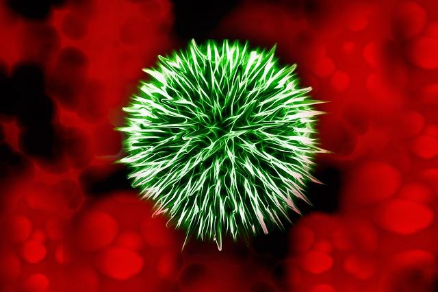 Санитарные врачи Приморья не дали проникнуть в край больным с опасными инфекциями