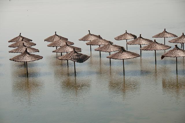 В Уссурийске спроектируют дамбу «Солдатское озеро»