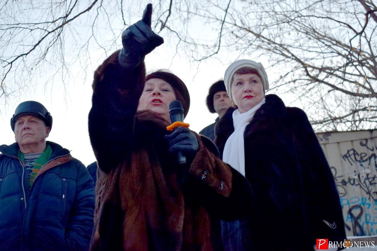 Многоэтажка или сквер? Владивостокцы вышли на митинг