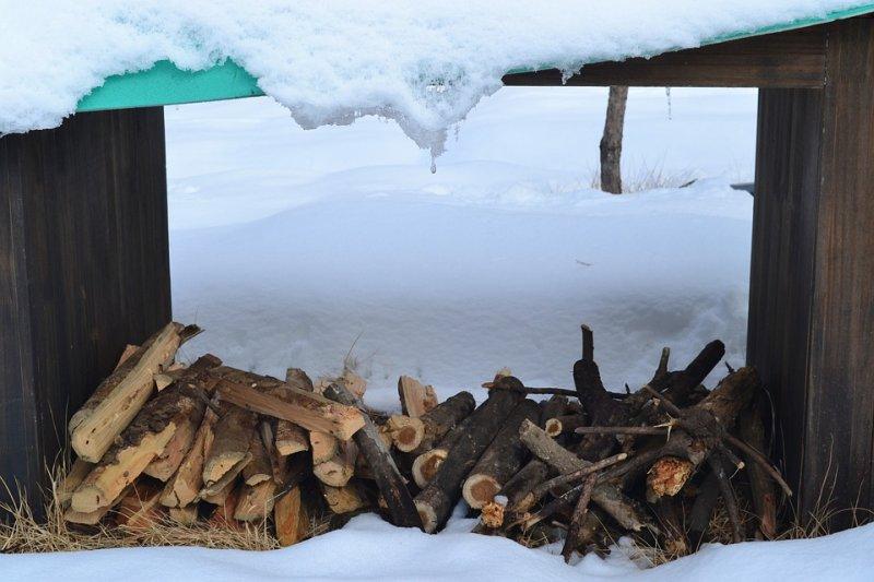 Не жизнь, а выживание: жители села Тигровый замерзают без дров