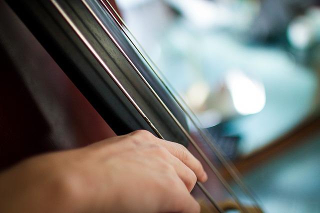 Фестиваль альтовой музыки стартовал во Владивостоке