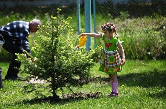 Мероприятия в рамках Года экологии состоялись уже в более десяти муниципалитетах Приморья