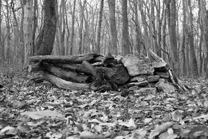 В Уссурийске женщина поселилась в шалаше на пустыре