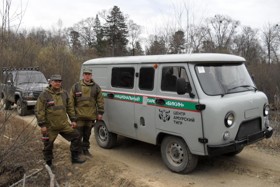 Центр «Амурский тигр»: охрана Бикина усиливается
