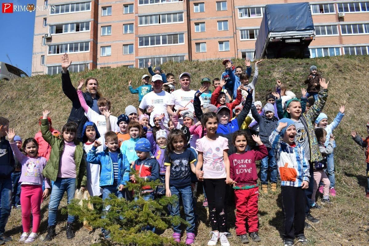 На субботнике во Владивостоке высадили аллею хвойных деревьев