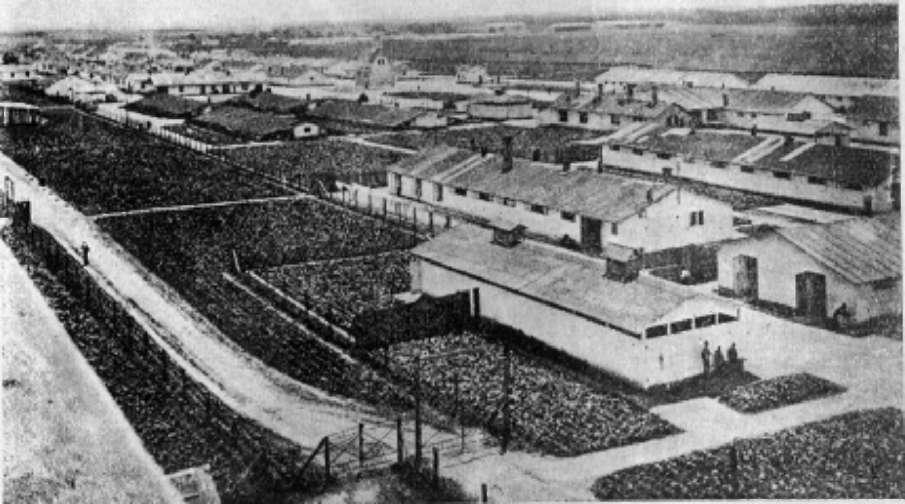 Жители Артёма — бывшие узники концентрационных лагерей — поделились своими воспоминаниями