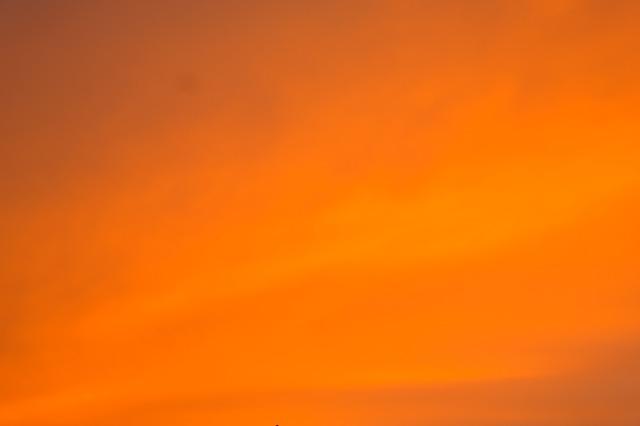 Оранжевый самолёт украсил небо над Приморьем