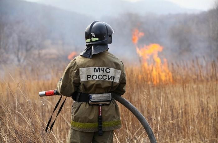 В Приморье за сутки потушили 14 лесных пожаров