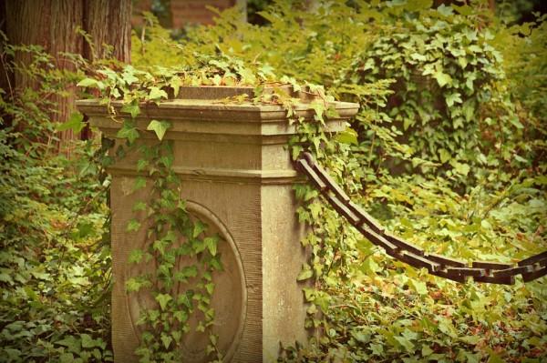 Многочисленные нарушения законодательства о погребении и похоронном деле выявили в Приморье