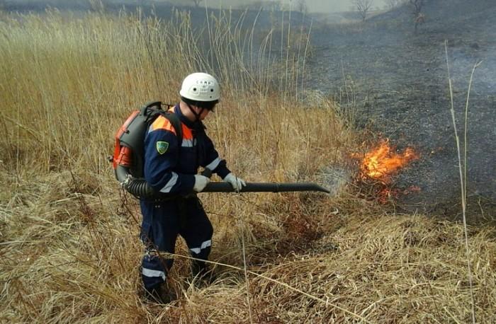 За выходные в Приморье потушили 15 лесных пожаров