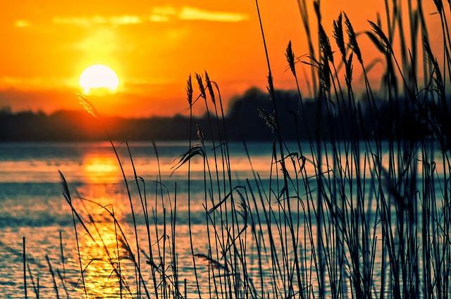 Спасать село Новосельское на берегу Ханки будут с помощью откачки воды в канале