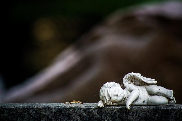 В Уссурийске начали обсуждать проект нового кладбища