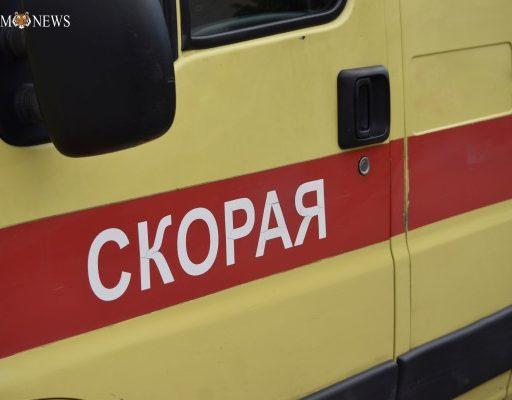Жительница Владивостока натравила большую собаку на врачей скорой помощи