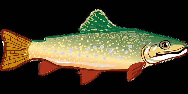В Приморье нарастили объём производства аквакультуры