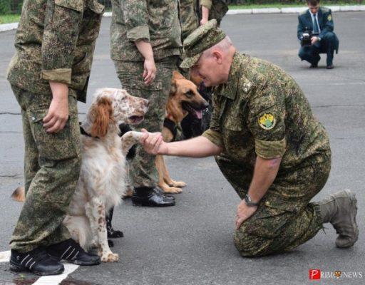 Бойцы таможенного СОБРа и кинологи выступили во Владивостоке