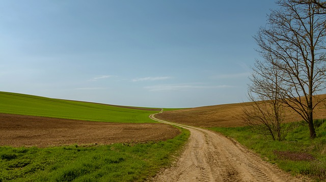 Дорогу к посёлку Славянка отсыпали в Приморье