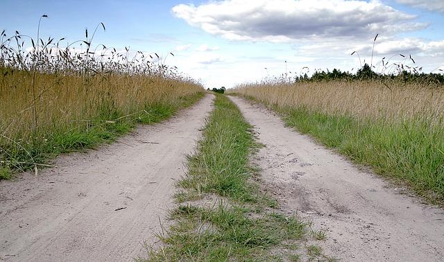 На аварийный ремонт дорог в приморском селе Безверхово выделили шесть млн рублей