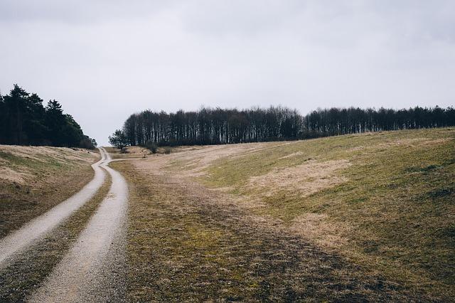 В Приморье смыло участки дорог к Славянке, Оленеводу и Покровке