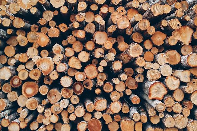 Жители приморской глубинки столкнулись с новой проблемой: они не могут заказать дрова через Интернет