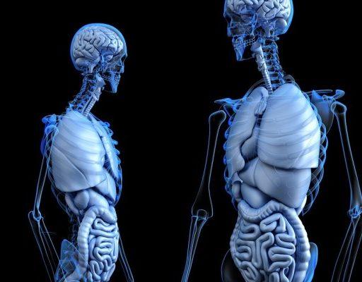 Прокуратура: в Находке семеро больных заразной формой туберкулёза уклоняются от лечения