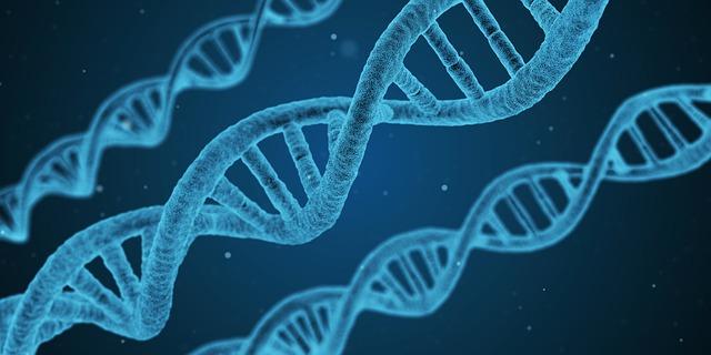 При ДВФУ создали Центр геномной и регенеративной медицины