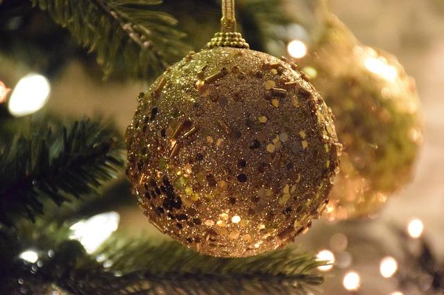 Власти Владивостока получили возможность сэкономить на новогодней ёлке