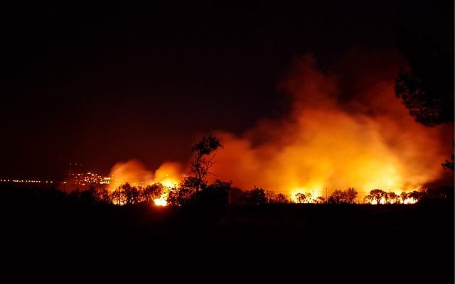Горят лес и поля: в Приморье огонь вплотную подошёл к оживлённым дорогам