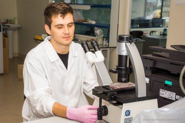 Дальневосточные лекарственные грибы помогут в лечении рака