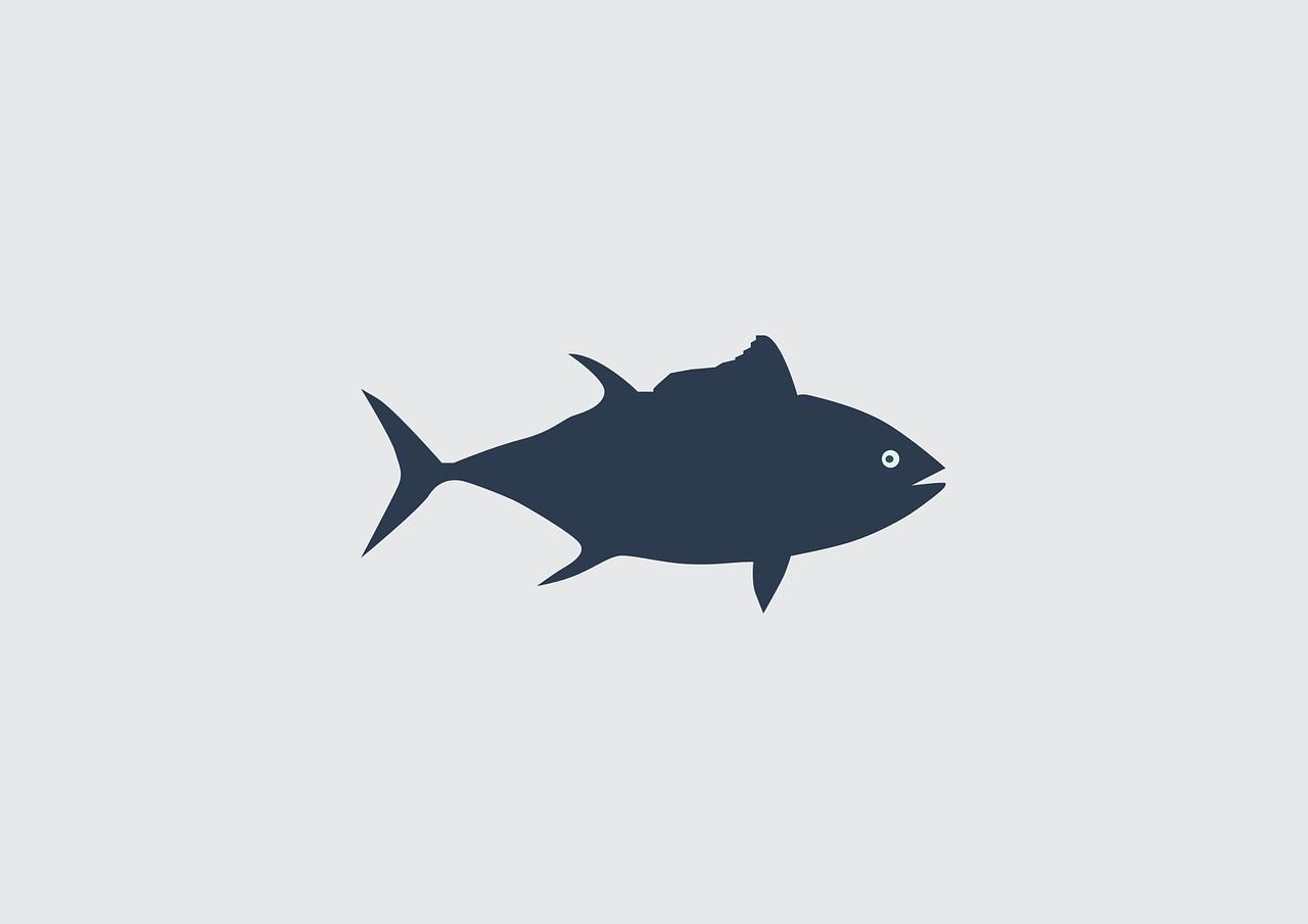 Во Владивостоке разделают, а затем съедят тунца массой 60 кг