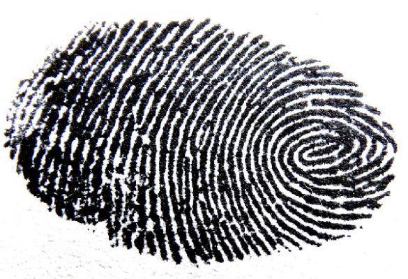 В Приморье полицейские нашли подозреваемого в угоне машины по отпечаткам пальцев